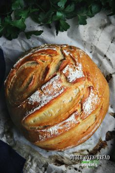The Best Dutch Oven Bread: Bread for beginners - Sandra's Easy Cooking - Dessert Bread Recipes Best Dutch Oven, Dutch Oven Cooking, Dutch Oven Recipes, Easy Cooking, Cooking Recipes, Dutch Ovens, Quirky Cooking, Chef Recipes, Recipes Dinner