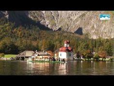 Almabtrieb am Königssee: Jedes Jahr findet Anfang Oktober ein ganz besonderes Spektakel am Königssee statt: Der Almabtrieb über den Königssee. Da das Südufer auf dem Landweg nur sehr mühsam über das Hochgebirge zu erreichen ist, werden die Kühe von der Saletalm am Südufer des Königssees sowie der Fischunkelalm am noch weiter südöstlich gelegenen Obersee mit flachen Transportschiffen über den See gebracht. Das Schmücken der Tiere mit den traditionellen Fuikln erfolgt dann erst an der…