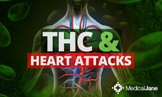 An Israeli study has shown that tetrahydrocannabinol (THC) may reduce that damage caused by heart attacks by limiting the size of infarctions.