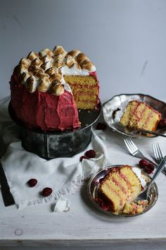 Coconut Cake with Raspberry Buttercream and Toasted Meringue