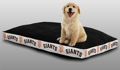 Use the code PINFIVE to receive an additional 5% discount off the price of the San Francisco Giants MLB Sports Logo Pet Bed at SportsFansPlus.com