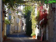 The Way of St.James in France : Walking between Cahors and Lectoure - 80 photos.