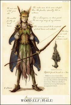 Wood Elf (Male) ~ Tony DiTerlizzi. http://mydelineatedlife.blogspot.ca/2011/03/people-whom-we-cannot-see.html