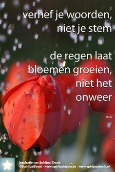 Prachtige spreuk: verhef je woorden, niet je stem - de regen laat bloemen groeien, niet het onweer Rumi