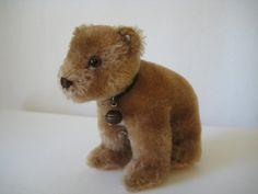 Steiff Vintage Mid Century Bear Cub - Jungbaer - Raised Script Button - Original Collar & Bell - A Beautiful Bruin! Perfect Peach, Ear Tag, Bear Cubs, Leather Collar, Etsy App, Green Leather, Black Glass, Teddy Bears, Script