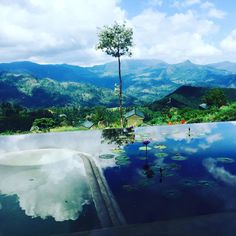 Madulkelle Tea and Eco Lodge (Kandy, Sri Lanka) - Hotel Reviews - TripAdvisor