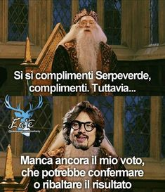 Harry Potter Disney, Harry Potter Tumblr, Harry Potter Anime, Harry Potter Books, Harry Potter Fandom, Harry Potter World, Harry Potter Memes, Funny Images, Funny Photos