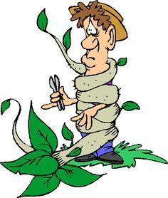 25 best gardening images clip art art activities clip art free rh pinterest com