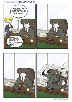 Tom Founder. The adventures of business cat.