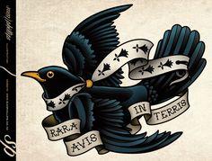 This is a blackbird tattoo I designed for Sebastien Merle. Copyright www.samphillips.co.nz
