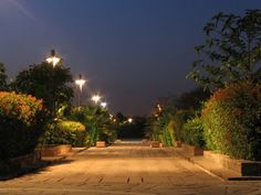 Delhi Photos - Pic 3527 Can a green garden look any better? - A wonderful shot of the Garden of Five Senses at New Delhi clicked during night time. South Korea Photography, Night Photography, Garden Of Five Senses, Delhi Tourism, Luxembourg Gardens, Dubai Skyscraper, India Tour, Cultural Experience, Unusual Things