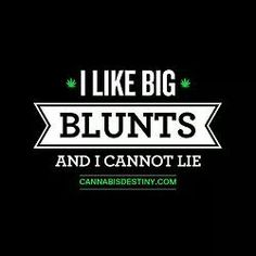 Blueberry regular seeds are the most common medical strain used for relieving overnight stress and pain. This is also a Cannabis Cup winner of Crop King. Stoner Quotes, Weed Quotes, Funny Quotes, 420 Quotes, Stoner Meme, Weed Humor, Puff And Pass, Smoking Weed, Ganja