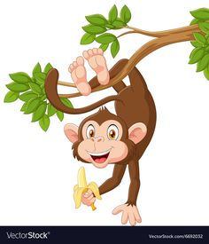 Find Cartoon Happy Monkey Hanging Holding Banana stock images in HD and millions of other royalty-free stock photos, illustrations and vectors in the Shutterstock collection. Thousands of new, high-quality pictures added every day. Cartoon Cartoon, Cartoon Monkey, Cartoon Banana, Happy Cartoon, Monkey Drawing, Monkey Art, Illustration Singe, Photos Singe, Free Monkey