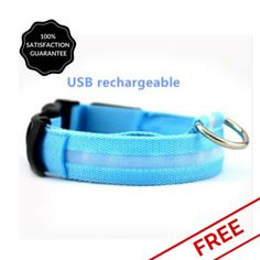 FREE Blue Nightime LED Dog Collar With USB Re-Chargeable Batteries
