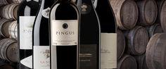 Servicio de Selección y Suministros - bodega en casa Wines Suite | #bodegaencasa #vinoteca #bodegaprivada #bodegadevinos #vino #winessuite #bodegadeguarda  🍾 🍾  Wines Suite - Bodega en casa 🍾🍾  more photos in http://www.winessuite.com/