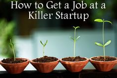How to Score a Job at an Awesome Startup