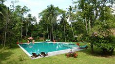 Immense piscine dans un jardin tropical - Villa Sepalika au Sri Lanka