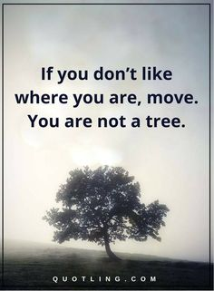 inspirational quotes If you don't like where you are, move. You are not a tree.