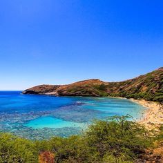Amazing shot of Hanauma Bay Oahu by photographer Carlos Palacios. Prints/Canvas available www.insectoart.com #chicasurf www.chicasurfadventures.com/hawaii-surf-camp #snorkeling #tropical #reef #fish