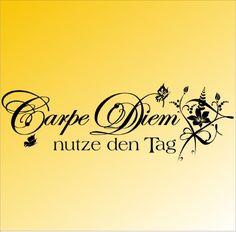 wandtattoo-carpe-diem-nutze-den-tag-wand-tattoo-wandtatoo-blume-spruch-zitat-070-schwarz-110x38-cm.jpg 500×493 Pixel