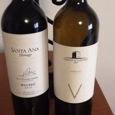 Santa Ana Homage Malbec 2010 vs Esporão Verdelho 2010. Who will win?