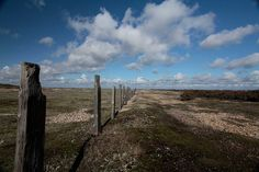 Dungeness - so much space