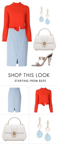 """""""1447"""" by explorer-14809378428 ❤ liked on Polyvore featuring Akris Punto, Rejina Pyo, Dolce&Gabbana, Saks Fifth Avenue and Roberto Cavalli"""
