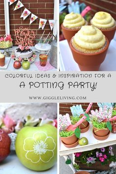 potting party inspir