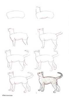 How To Draw-Como Desenhar  #PipocaComBacon