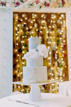 A Star Wars (Love) Story: Emi and Andre's Elegant Star Wars Themed Wedding Star Wars Wedding Cake, Star Wars Cake, Wedding Pics, Wedding Blog, Wedding Desserts, Wedding Cakes, Table Centerpieces, Table Decorations, Cake Toppings