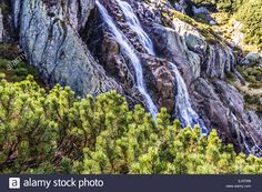 The Great Siklawa Waterfall (70 m high) on Roztoka Stream. The High Tatra Mountains, Carpathians. Valley of Five Polish Ponds. Amazing nature reserve in Poland