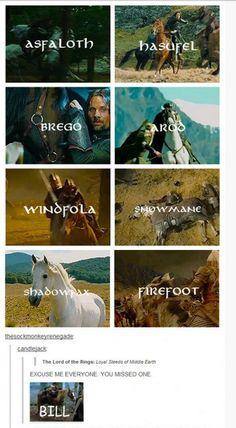 LOTR Horses