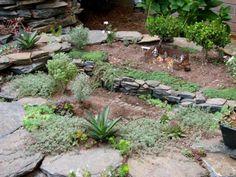 Ann's in ground mini garden