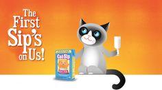 masthead-cat-sip
