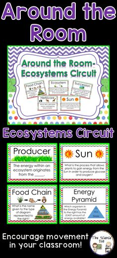 Ecosystems - Around the Room Circuit.  This is a great activity for review while also encouraging movement within your classroom.