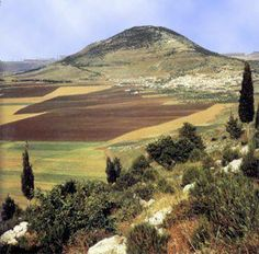 """Mount Tabor, one of the suburbs the Lord gave for the children of Israel. """"Unto the rest of the children of Merari were given out of the tribe of Zebulun, Rimmon with her suburbs, Tabor with her suburbs:"""" (1 Chronicles 6:77)"""