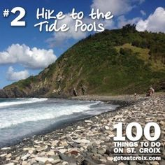 St. Croix 100 - #02 Tide Pools - The Annaly Bay tide pools are a series of large, naturally formed pools found on St. Croix's beautiful North Shore. While accessing these pools is a bit of a challenging hike, it is worth every single step. On your way to the tide pools, you will hike through a portion of the island's rainforest and enjoy breathtaking views of Renaissance St. Croix Carambola Beach Resort, Davis Bay, and the seemingly endless Caribbean Sea.