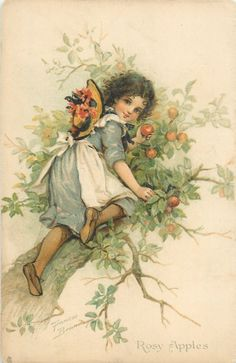 Vintage girl up in tree picking apples
