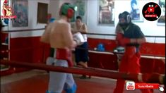 Mexican Boxers, Boxing