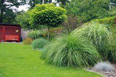 Výsledok vyhľadávania obrázkov pre dopyt okrasná záhrada pri plote
