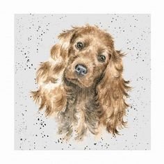 Wrendale Designs A Dog's Life Greeting Card Golden Cocker Spaniel in Home, Furniture & DIY, Celebrations & Occasions, Cards & Stationery | eBay!
