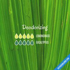 Deodorizing — Essential Oil Diffuser Blend
