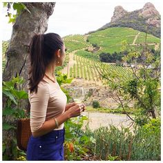 Yesterday at the #Malibu wine safari. How cool is saddle rock behind me? We swooned over the coastal drive along PCH and L❤️ved seeing the zebras while pretending to like wine! More of a slurpee kinda girl I'm afraid! #Malibuwines