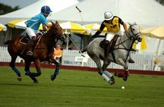 Polo for Heart Celebrates 35 years at Toronto Polo Club this June! Polo Match, Sport Of Kings, Polo Club, Raise Funds, Thoroughbred, Equestrian, Toronto, Pony, Community