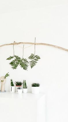 Urban Jungle Bloggers: Plants & Art by @mammilade