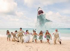 1 of the 22 Craziest and Most Creative Wedding Photos Ever via Brit + Co.- Shark Attack