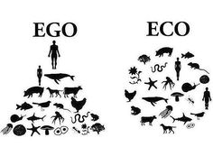 """Always interesting when people call vegans, """"self righteous"""" or """"elitists"""" etc.  Since when did choosing not to dominate, rape, torture and kill for pleasure with absolutely no scientific need to do so, while simultaneously contributing to the single most ecologically destructive industry on the planet become an elitist, egoic, self righteous act?  To each his own! Do what makes you happy! I often hear...well not if its at the expense of everyone else. What if stomping your dogs head into…"""