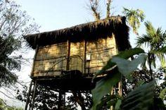 Eco-treehouse at Wynberg Resorts, Kerala, India