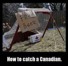 A funny picture showing a crazy way to catch a Canadian. You have to make a trap and put some beers as a bait. Soon the Canadian will be caught. Humour Canada, Canada Funny, O Canada, Canada Jokes, Canadian Memes, Canadian Things, I Am Canadian, Canadian Humour, Canadian Facts
