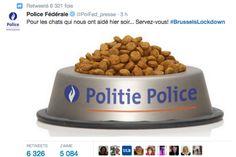 Voici le tweet publié par la police belge le 23 novembre 2015, au lendemain d'une vaste opération de police. (Twitter / Police fédérale belge)